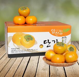 (예약판매)하동단감 15kg(특특품 55과내외)